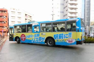 20190316seibua0473hibari02